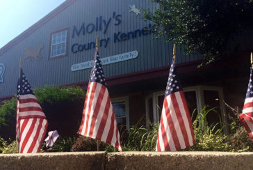 Memorial Day, Molly's Country Kennels