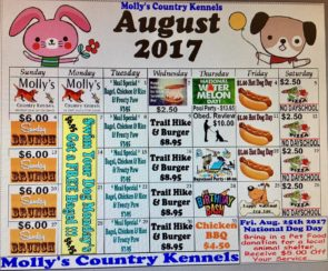 Molly's Country Kennels August Schedule
