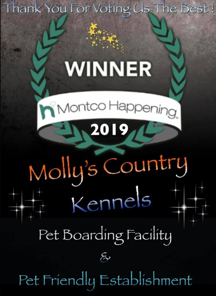 BOARDING & RATE INFO - Molly's Country Kennels