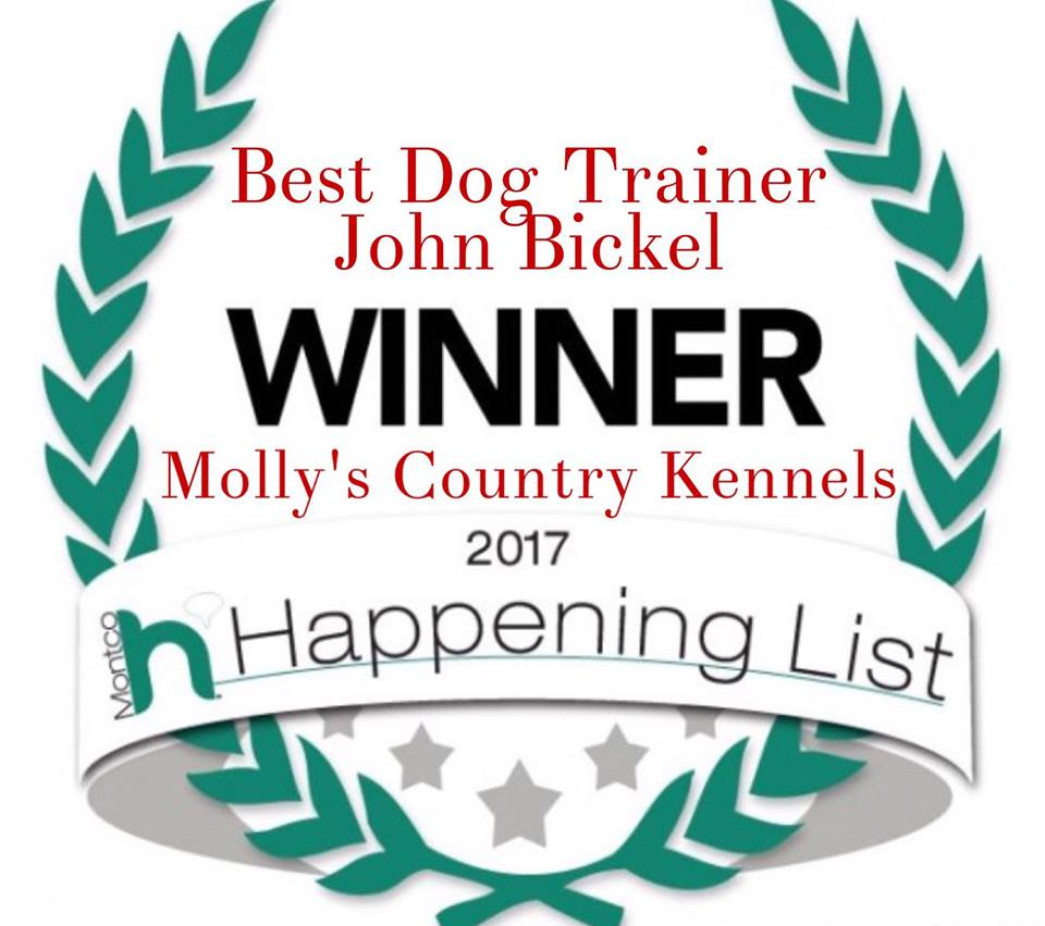 John Bickel, Dog Trainer, Molly's Country Kennels, Montgomery County Dog Trainer
