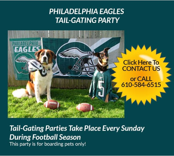PHILADELPHIA EAGLES TAIL-GATING PARTY