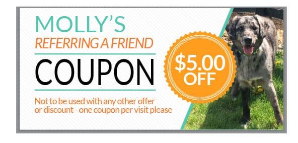 coupon_Five_Reffering
